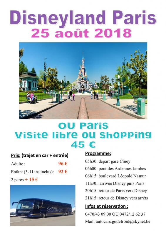 Affiche disney et paris shopping 25082018