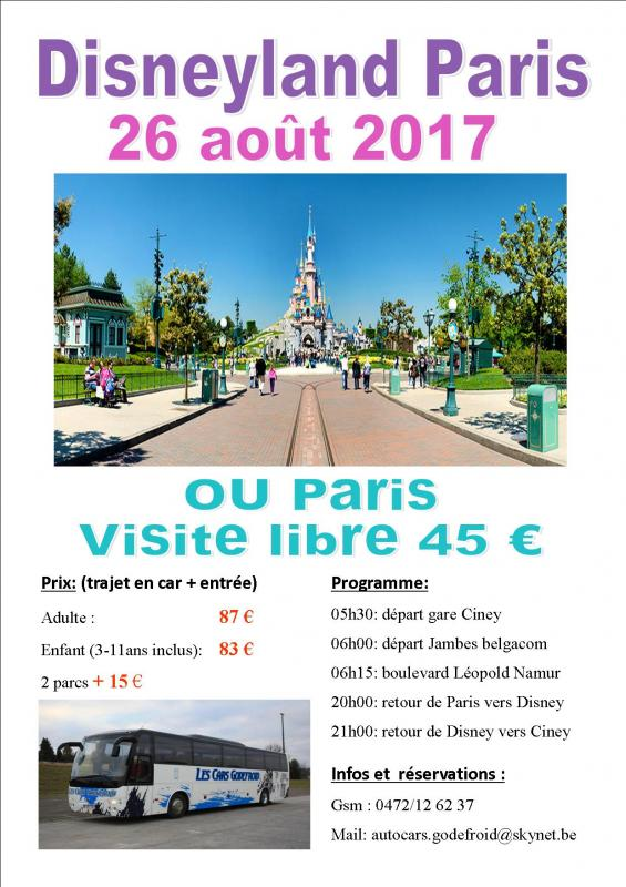 Affiche disney et paris shopping 26082017