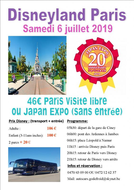 Affiche disney japan expo et paris shopping 6072020