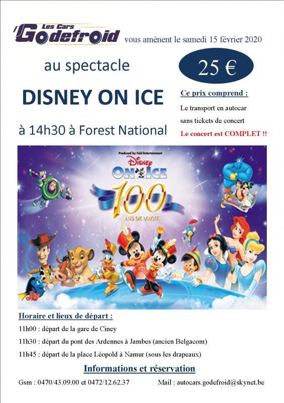 Disney on ice spectacle 15 fev 2