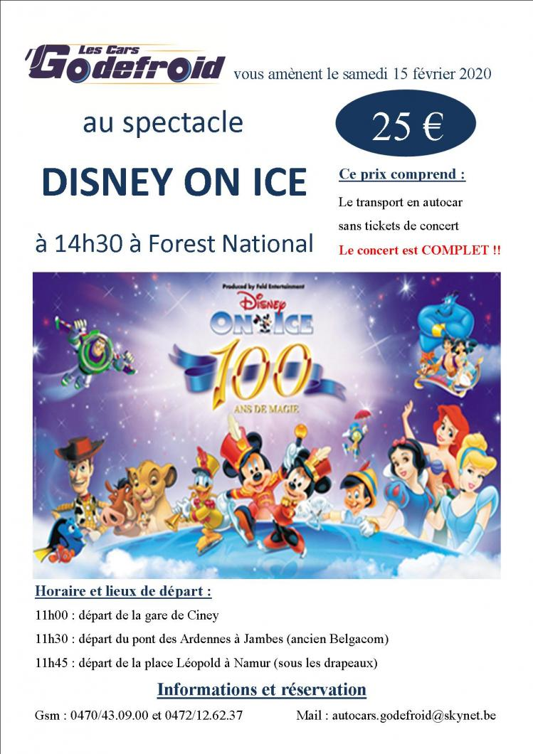 Disney on ice spectacle 15 fev 2